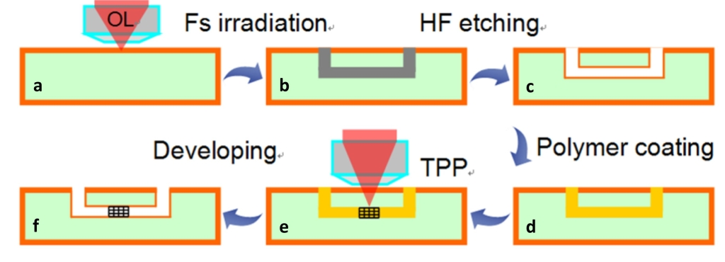Fig. 1. Schematic illustration of the fabrication procedure for a 3D ship-in-a-bottle biochip by HFLM. It mainly consists of (a) fs laser 3D direct writing of photosensitive Foturan glass followed by (b) a thermal treatment, (c) HF etching, (d) polymer filling, (e) TPP and (f) developing.