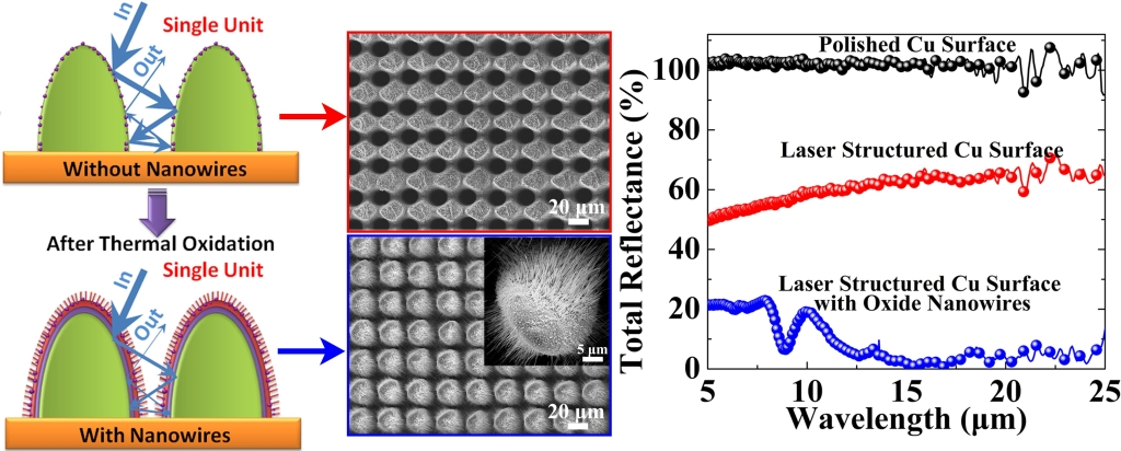 Unique ultrafast laser hybrid process to fabricate a macro-micro-nano-nanowire multi-scale structure on Cu surfaces by integrating laser ablation and oxidation
