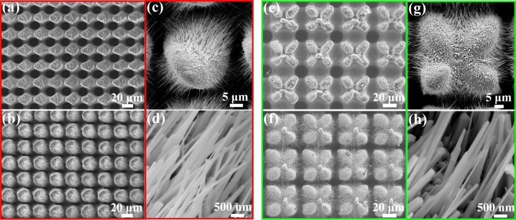 Figure 2. Nanowires growing on different kinds of micro-nano structures: (a) Micro cone structures and (b-d) nanowires growing on them and (e) micro petal structures and (f-h) nanowires growing on them