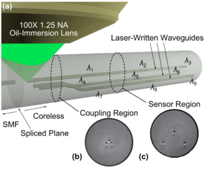 Figure 2. (a) Schematic of a temperature-compensated 3D fiber shape sensor, coupled to single-mode fiber (SMF), and laser-written in coreless fused silica fiber[8]. The λ1 to λ9 wavelengths represent nine different Bragg resonances for waveguide gratings distributed along three laser-written and parallel waveguide tracks. Micrographs of the fiber cross section (125 μm diameter) at the (b) coupling and (c) sensor regions show the arrangement of the internal laser-written waveguides. The figure is reproduced, with permission, from Fig. 1 of Lee et al.[8] © 2013 OSA  [http://dx.doi.org/10.1364/OE.21.024076].